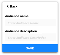 audience name and description example